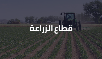 قطاع الزراعة