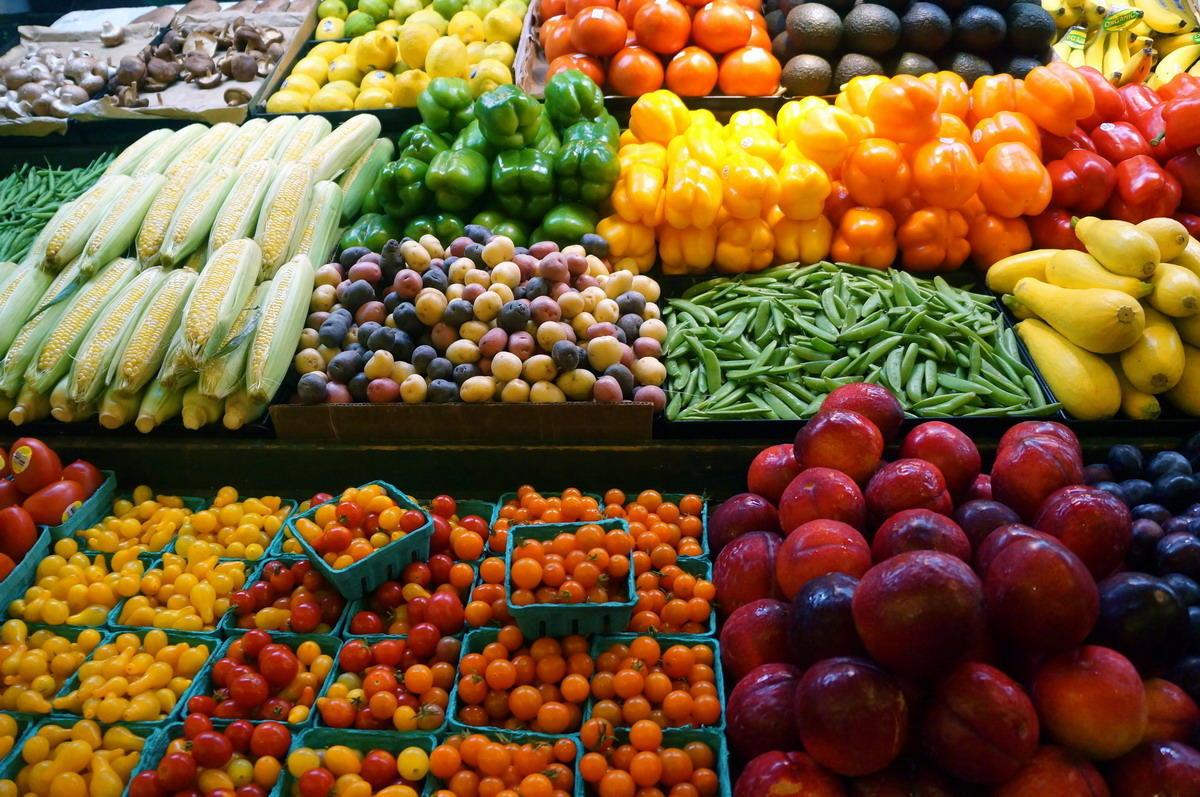 وزير الزراعة : صادرات مصر الزراعية تتجاوز الـ 4 ملايين طن لأول مرة هذا العام