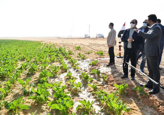 الرئيس السيسى يتفقد مشروع مستقبل مصر للإنتاج الزراعي
