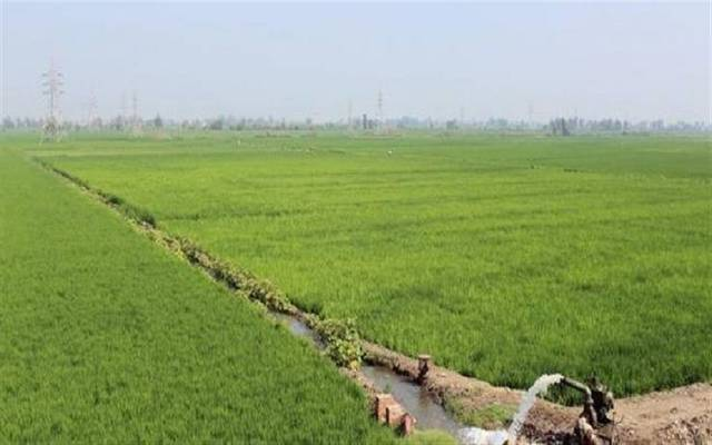الرئيس يبحث تجهيزات رفع المياه لمحطات الزراعة والاستصلاح بشمال ووسط سيناء