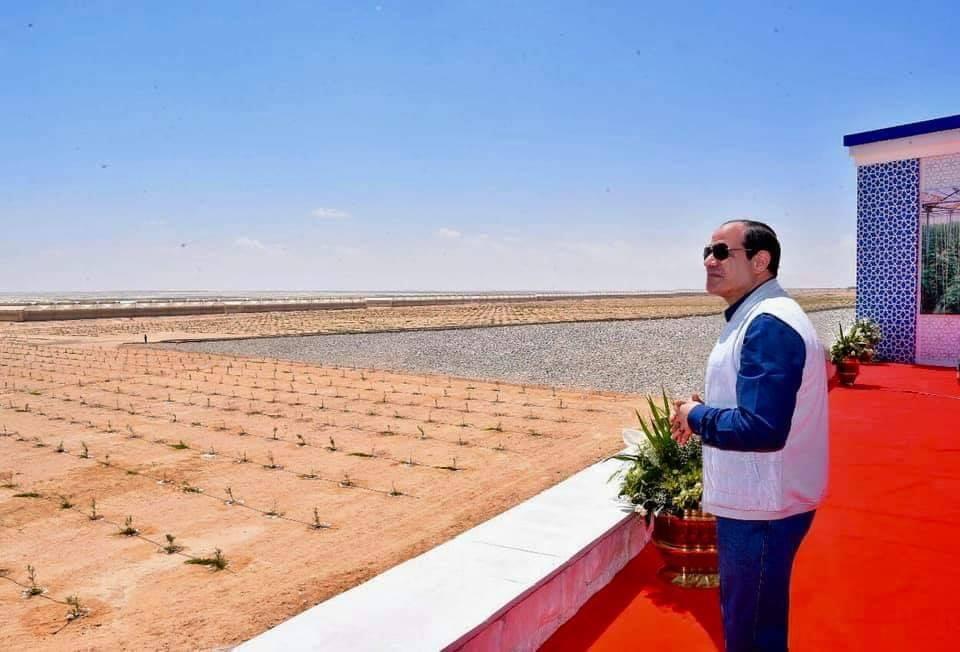 المرحلة الثانية من قطاع محمد نجيب للزراعات المحمية