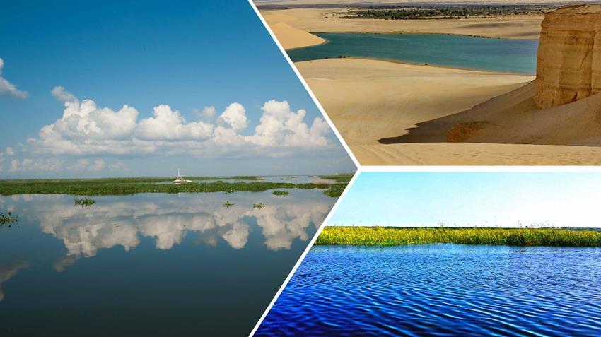 تطوير وتطهير البحيرات الشمالية