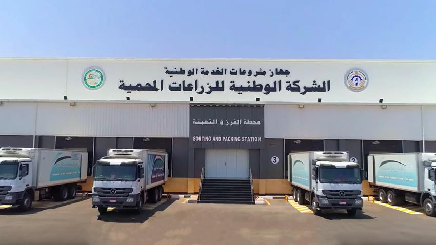 محطة الفرز والتعبئة للمنتجات الزراعية بقطاع قاعدة محمد نجيب