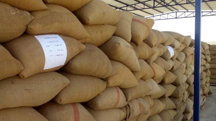 شونة الغلال بفراسكور بمحافظة دمياط