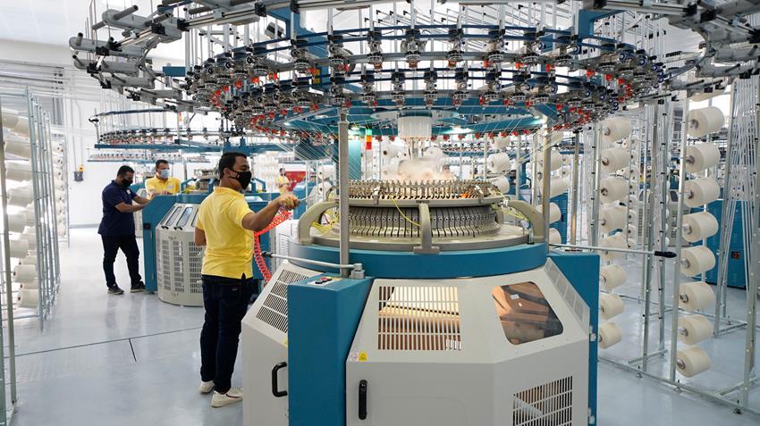 مصنع التريكو الدائري