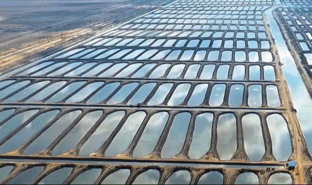 المزارع السمكية بشرق بورسعيد