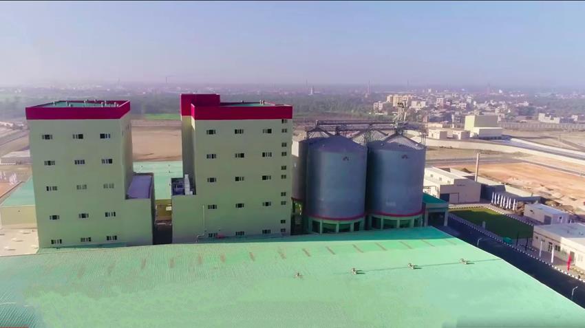 مصنع إنتاج العلف بغليون