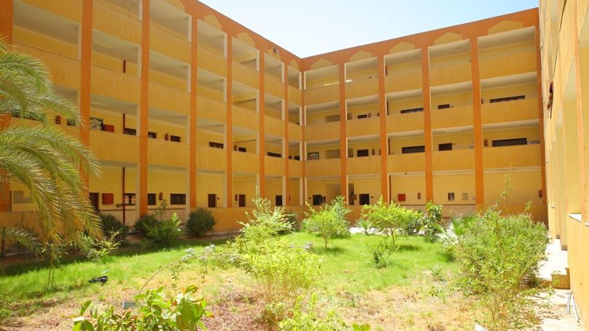 كلية الحاسبات والمعلومات بجامعة الأقصر