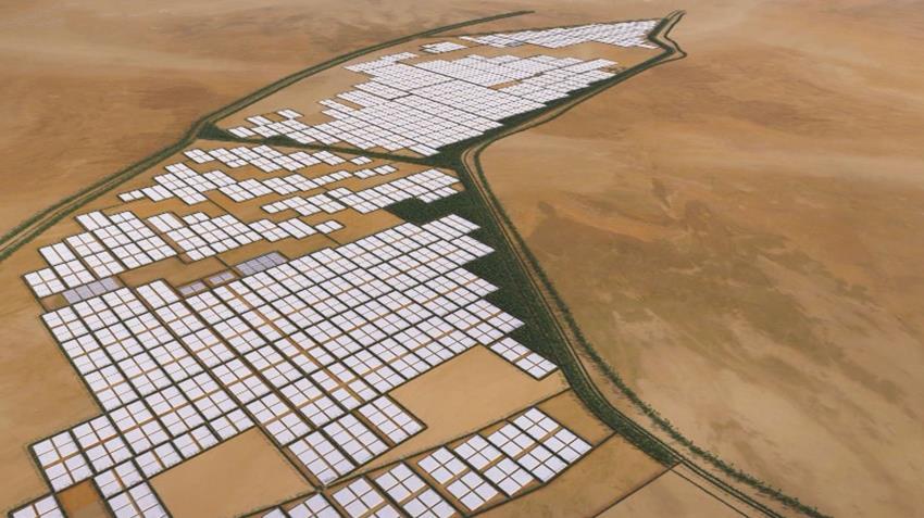 مزرعة اللاهون للزراعات المحمية بالفيوم